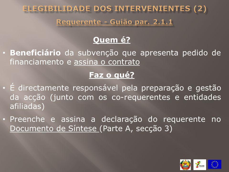 Elegibilidade dos intervenientes (2) Requerente - Guião par. 2.1.1