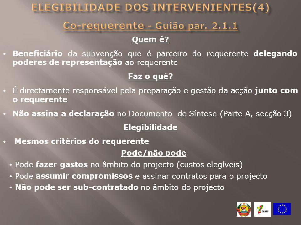 Elegibilidade dos intervenientes(4) Co-requerente - Guião par. 2.1.1