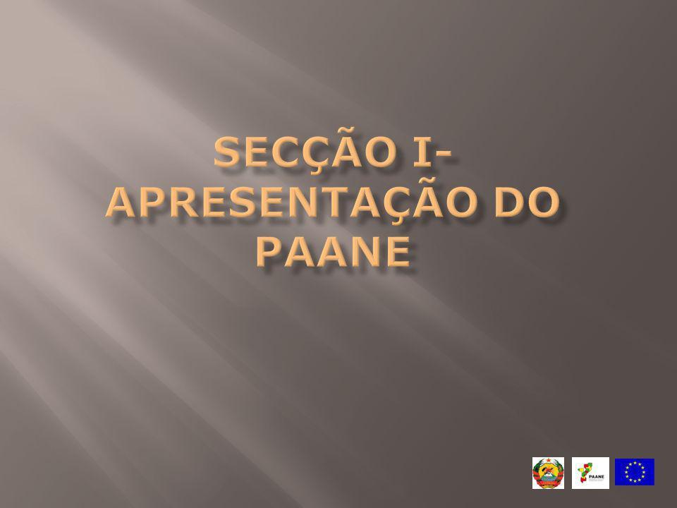 Secção I- apresentação do PAANe