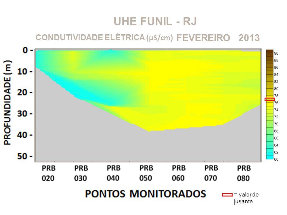 UHE FUNIL - RJ FEVEREIRO 2013 CONDUTIVIDADE ELÉTRICA (μS/cm)