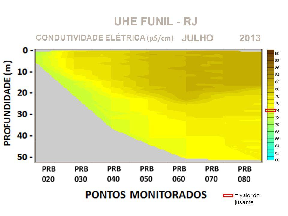 UHE FUNIL - RJ JULHO 2013 CONDUTIVIDADE ELÉTRICA (μS/cm)
