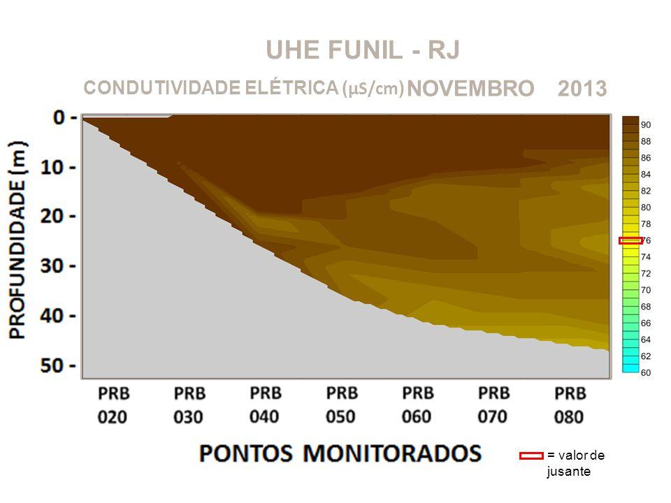 UHE FUNIL - RJ NOVEMBRO 2013 CONDUTIVIDADE ELÉTRICA (μS/cm)
