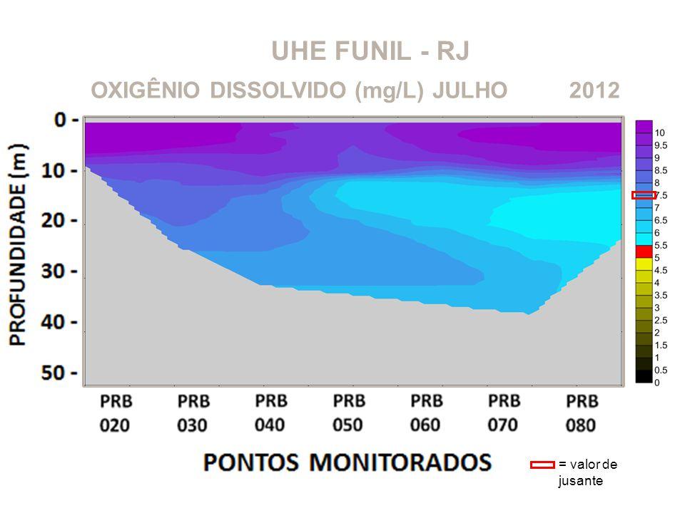 UHE FUNIL - RJ OXIGÊNIO DISSOLVIDO (mg/L) JULHO 2012