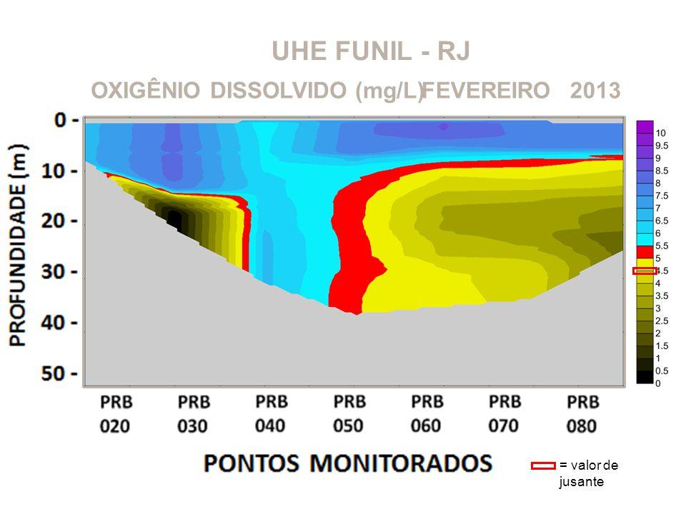 UHE FUNIL - RJ OXIGÊNIO DISSOLVIDO (mg/L) FEVEREIRO 2013
