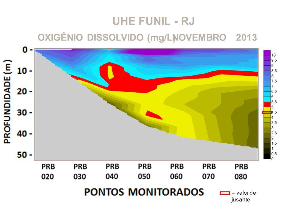 UHE FUNIL - RJ OXIGÊNIO DISSOLVIDO (mg/L) NOVEMBRO 2013