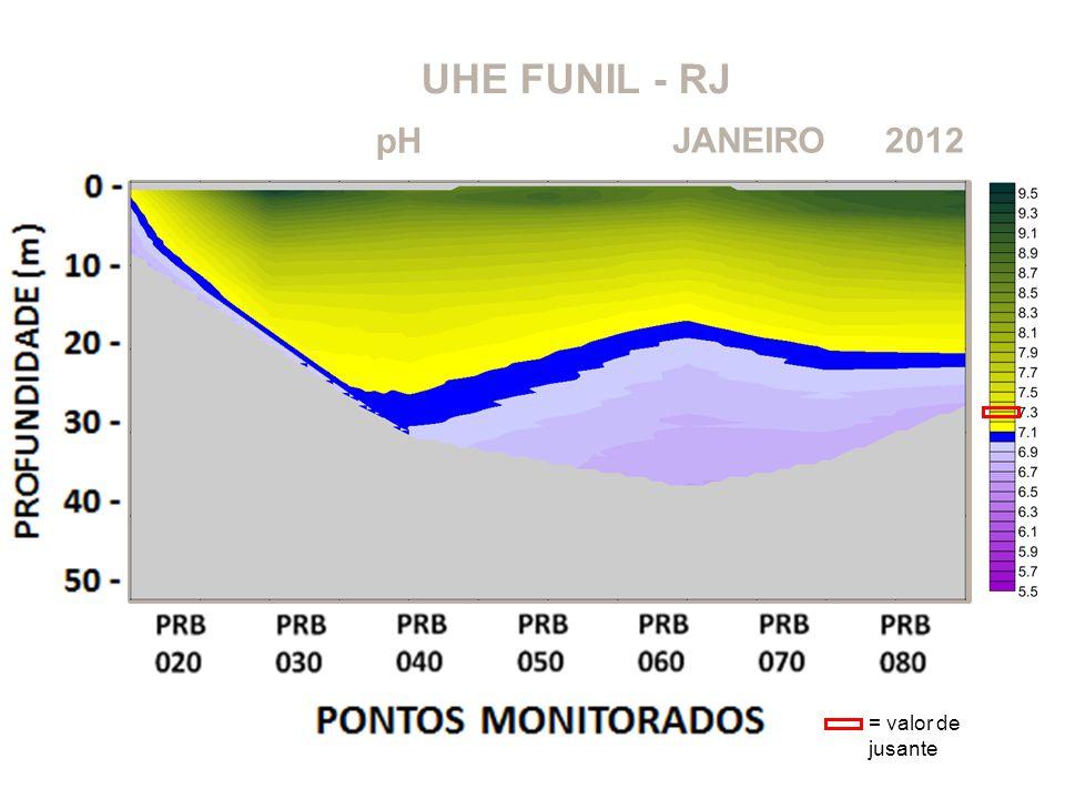 UHE FUNIL - RJ pH JANEIRO 2012 = valor de jusante