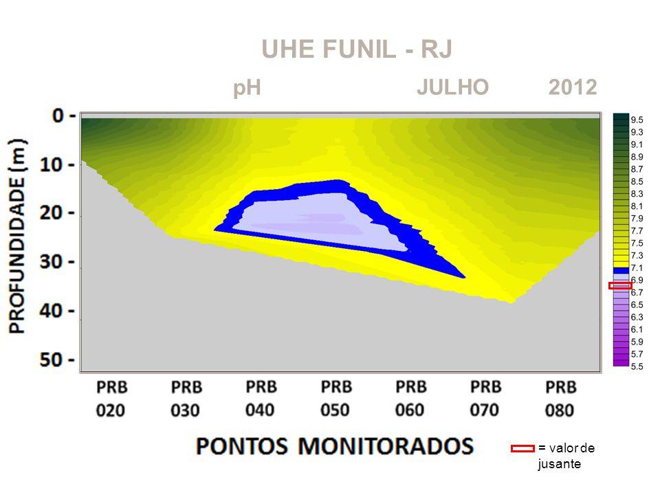 UHE FUNIL - RJ pH JULHO 2012 = valor de jusante