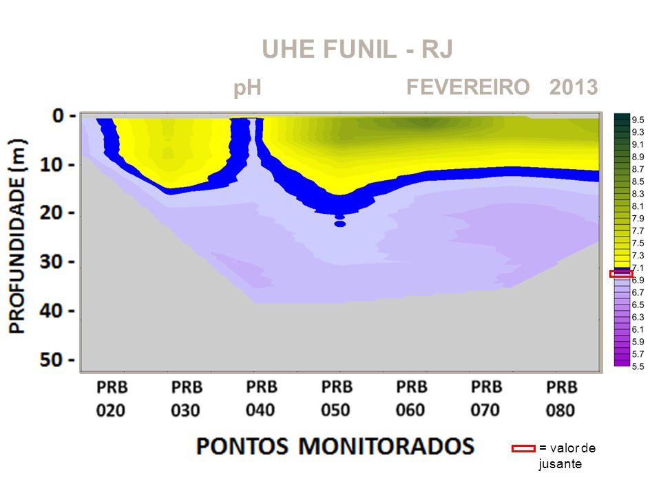 UHE FUNIL - RJ pH FEVEREIRO 2013 = valor de jusante