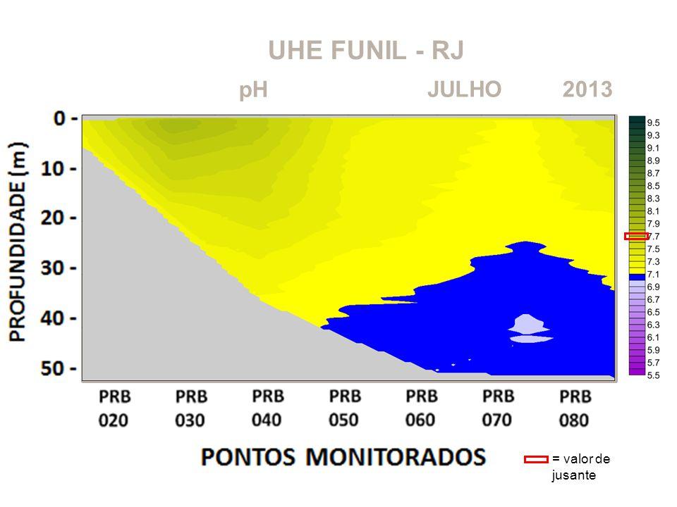 UHE FUNIL - RJ pH JULHO 2013 = valor de jusante