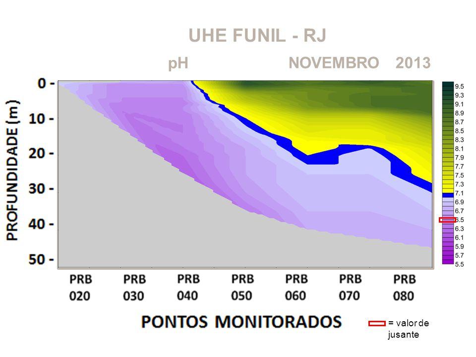 UHE FUNIL - RJ pH NOVEMBRO 2013 = valor de jusante