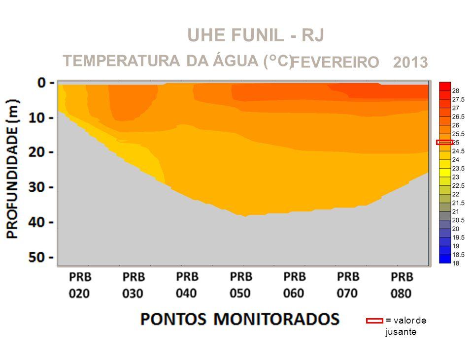 UHE FUNIL - RJ TEMPERATURA DA ÁGUA (°C) FEVEREIRO 2013
