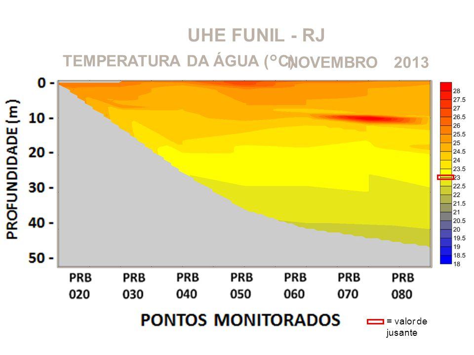 UHE FUNIL - RJ TEMPERATURA DA ÁGUA (°C) NOVEMBRO 2013