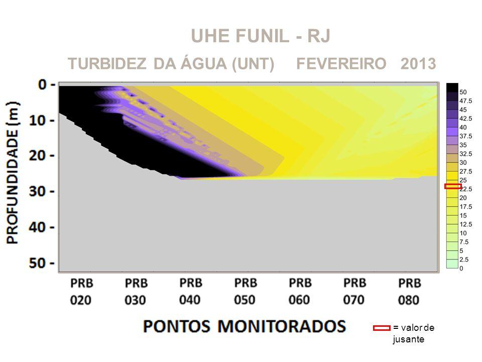 UHE FUNIL - RJ TURBIDEZ DA ÁGUA (UNT) FEVEREIRO 2013