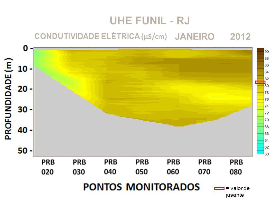 UHE FUNIL - RJ JANEIRO 2012 CONDUTIVIDADE ELÉTRICA (μS/cm)
