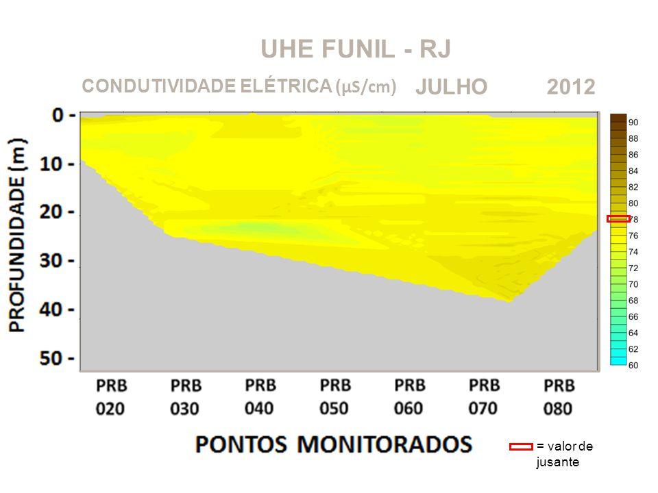 UHE FUNIL - RJ JULHO 2012 CONDUTIVIDADE ELÉTRICA (μS/cm)