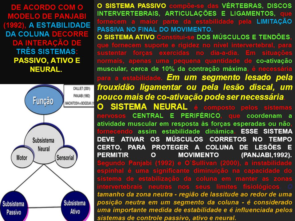 DE ACORDO COM O MODELO DE PANJABI (1992), A ESTABILIDADE DA COLUNA DECORRE DA INTERAÇÃO DE TRÊS SISTEMAS: PASSIVO, ATIVO E NEURAL.