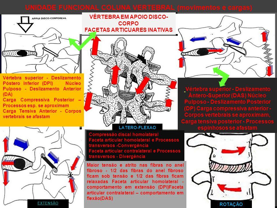 UNIDADE FUNCIONAL COLUNA VERTEBRAL (movimentos e cargas)