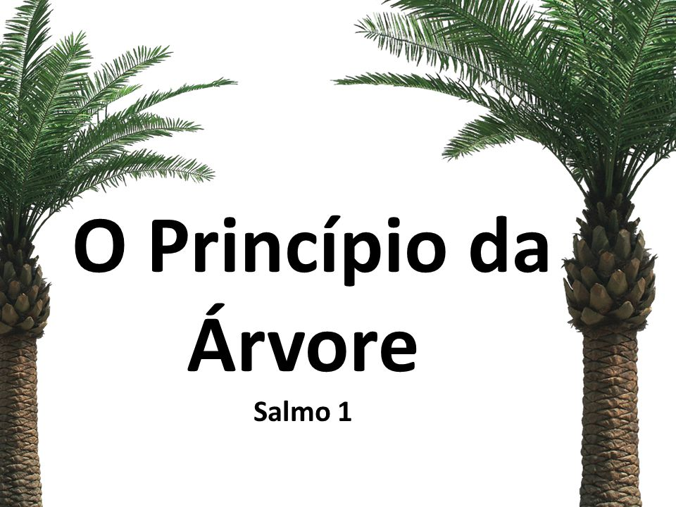 O Princípio da Árvore Salmo 1