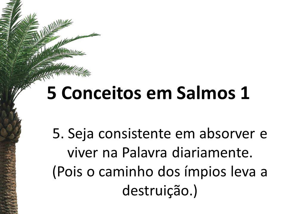 5 Conceitos em Salmos 1 5. Seja consistente em absorver e viver na Palavra diariamente.