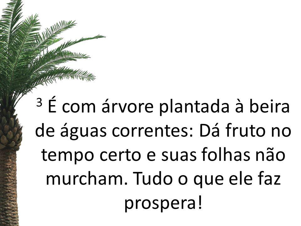 3 É com árvore plantada à beira de águas correntes: Dá fruto no tempo certo e suas folhas não murcham.