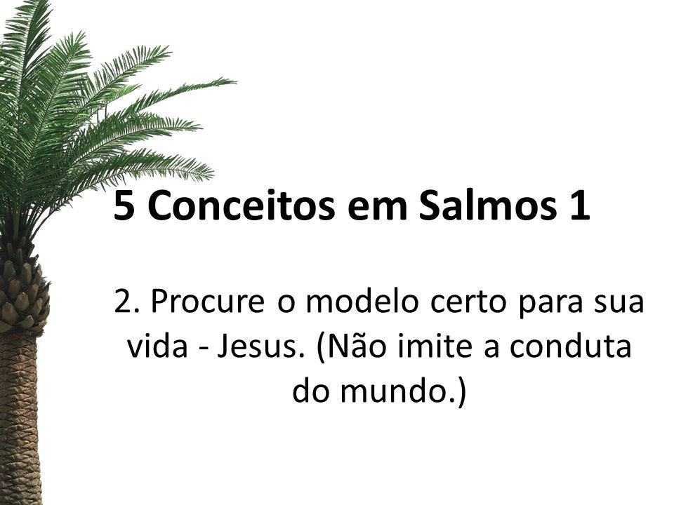 5 Conceitos em Salmos 1 2. Procure o modelo certo para sua vida - Jesus.