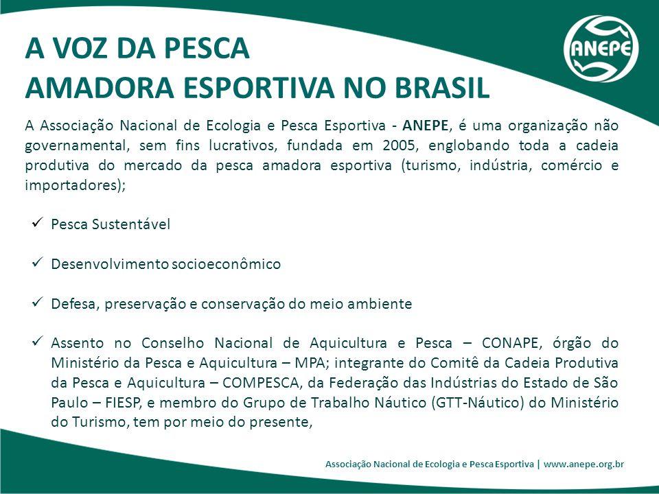 AMADORA ESPORTIVA NO BRASIL