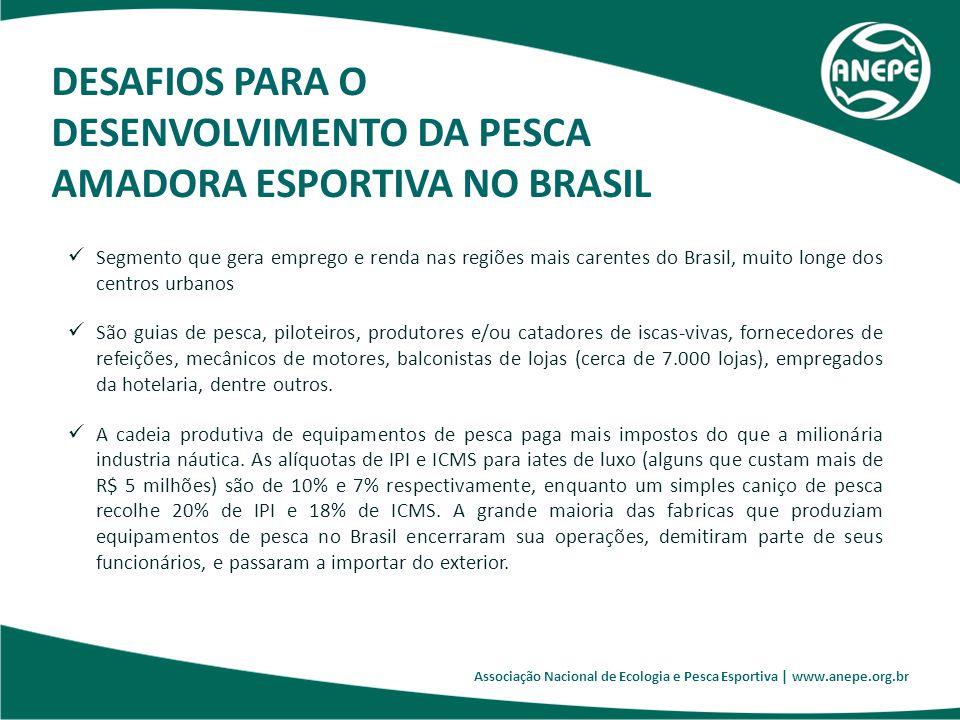 DESENVOLVIMENTO DA PESCA AMADORA ESPORTIVA NO BRASIL