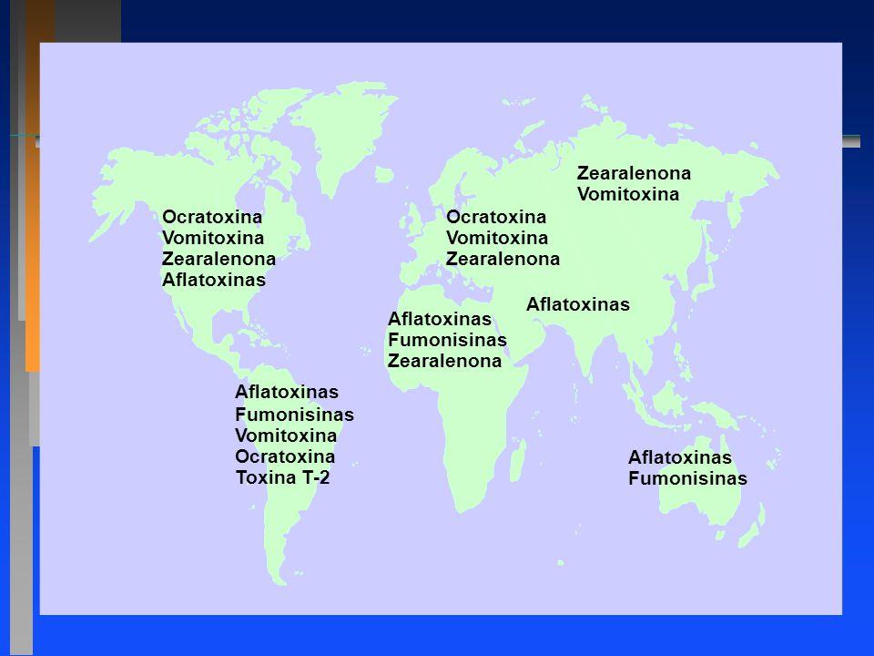 Zearalenona Vomitoxina. Ocratoxina. Vomitoxina. Zearalenona. Aflatoxinas. Ocratoxina. Vomitoxina.