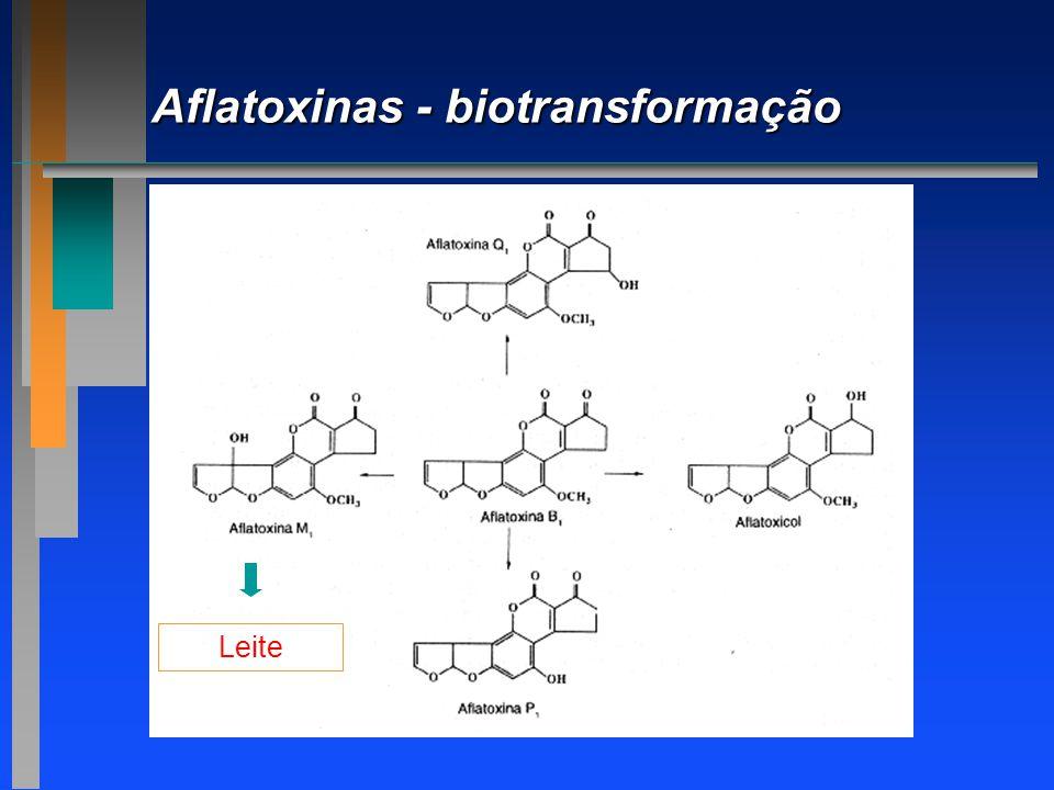 Aflatoxinas - biotransformação