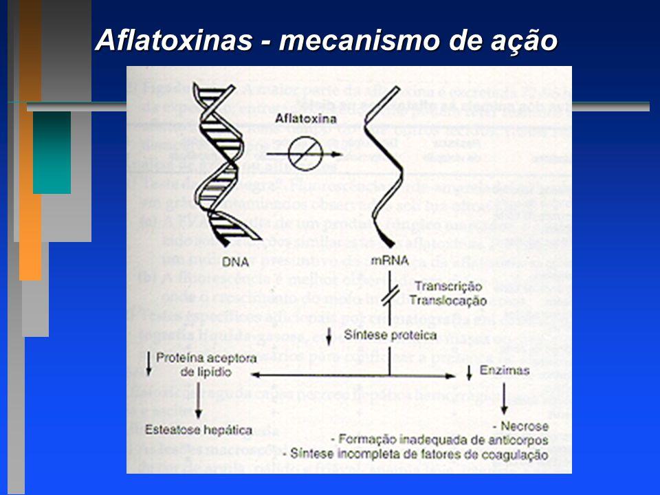 Aflatoxinas - mecanismo de ação
