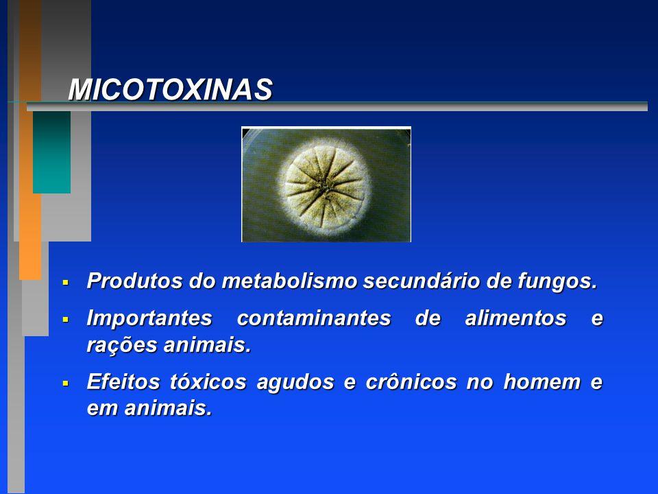 MICOTOXINAS Produtos do metabolismo secundário de fungos.