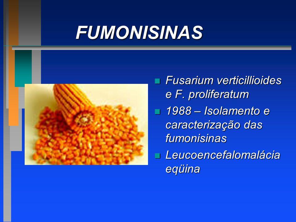 FUMONISINAS Fusarium verticillioides e F. proliferatum