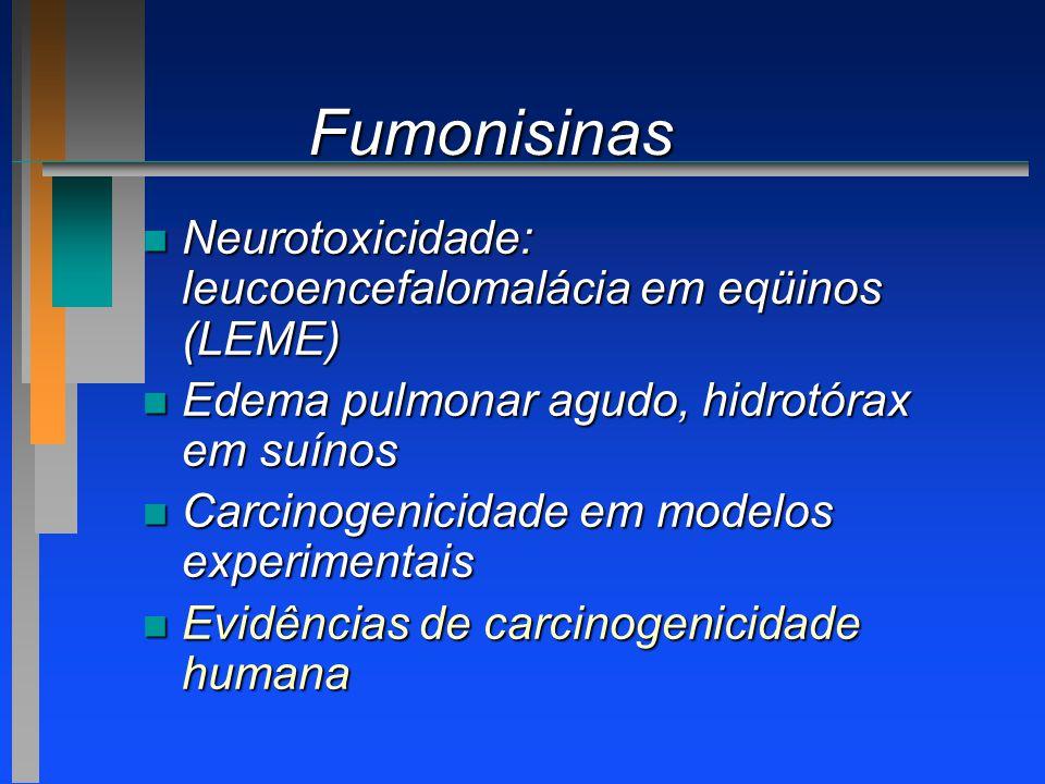 Fumonisinas Neurotoxicidade: leucoencefalomalácia em eqüinos (LEME)
