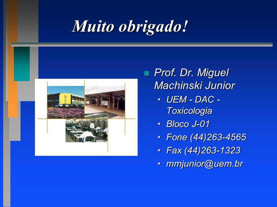 Muito obrigado! Prof. Dr. Miguel Machinski Junior