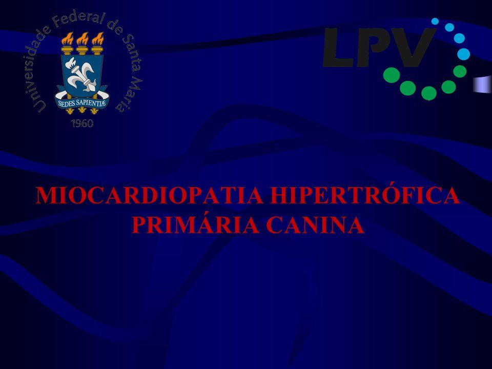 MIOCARDIOPATIA HIPERTRÓFICA PRIMÁRIA CANINA