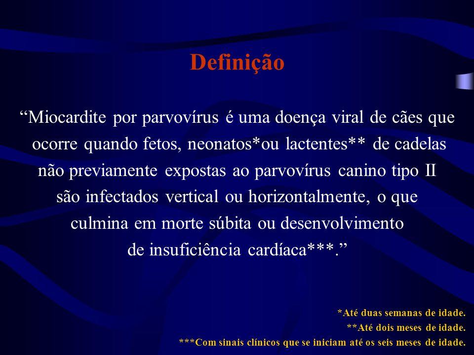 Definição Miocardite por parvovírus é uma doença viral de cães que