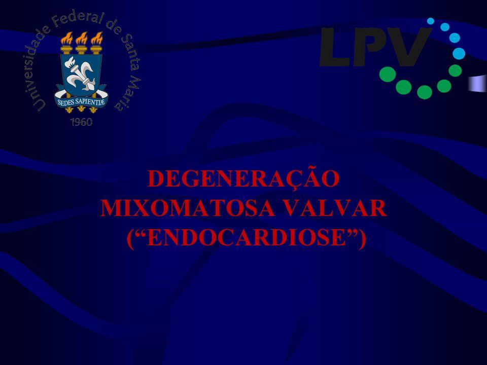 DEGENERAÇÃO MIXOMATOSA VALVAR ( ENDOCARDIOSE )