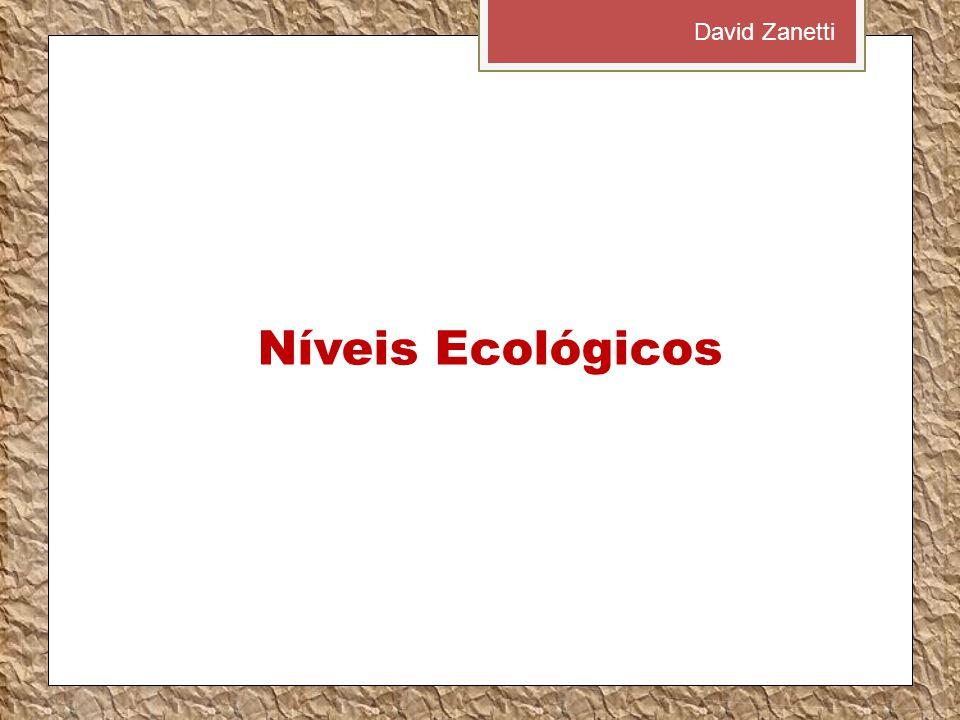 David Zanetti Níveis Ecológicos