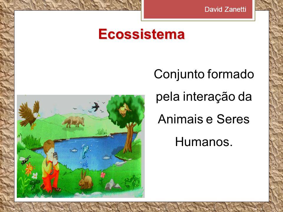 Conjunto formado pela interação da Animais e Seres Humanos.