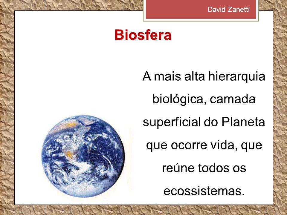 David Zanetti Biosfera.