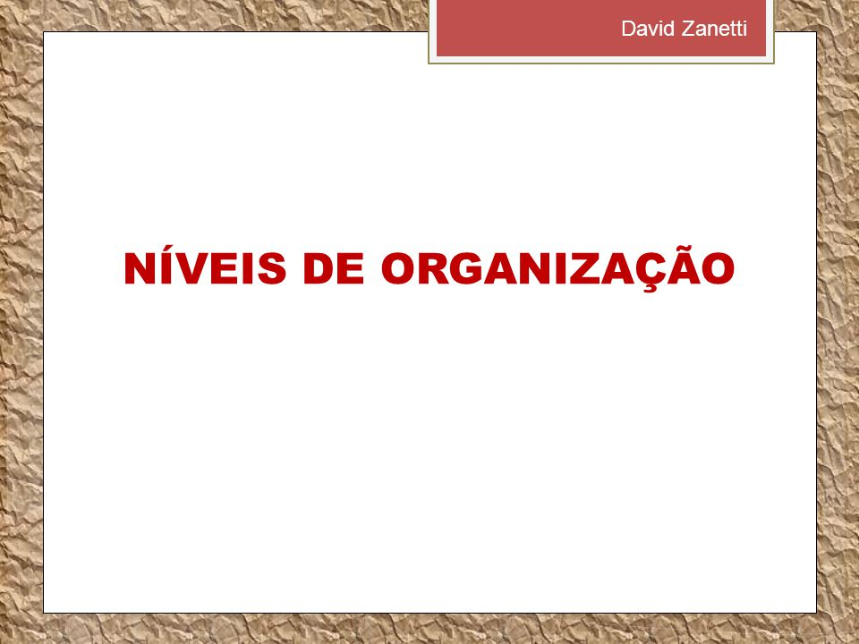 David Zanetti NÍVEIS DE ORGANIZAÇÃO