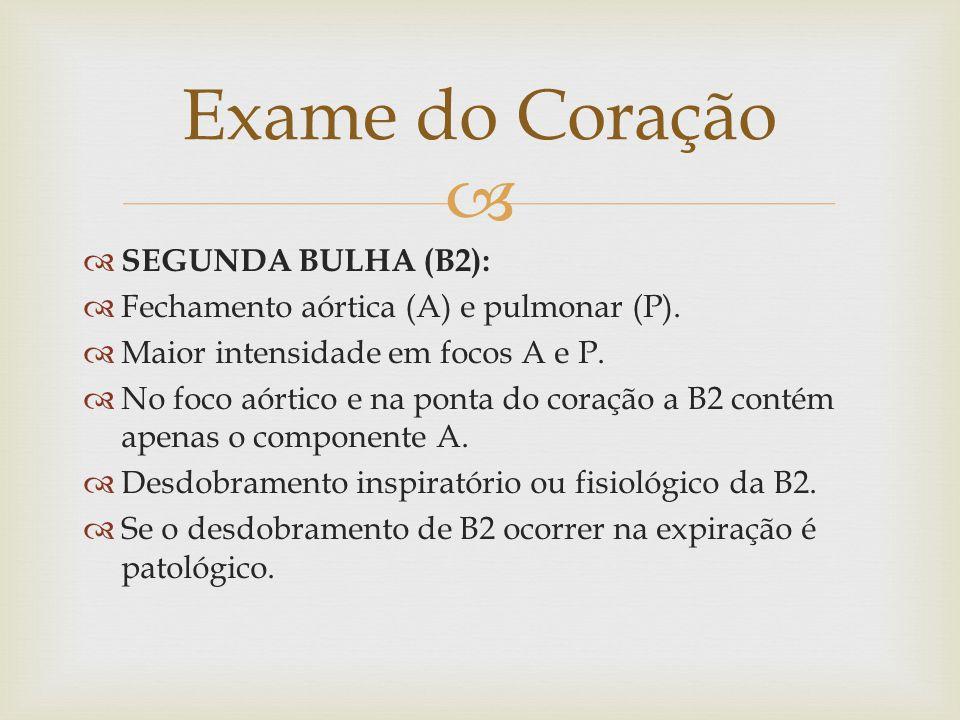 Exame do Coração SEGUNDA BULHA (B2):