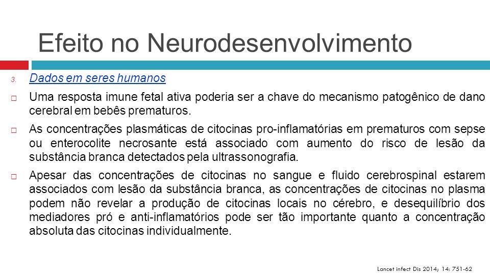 Efeito no Neurodesenvolvimento