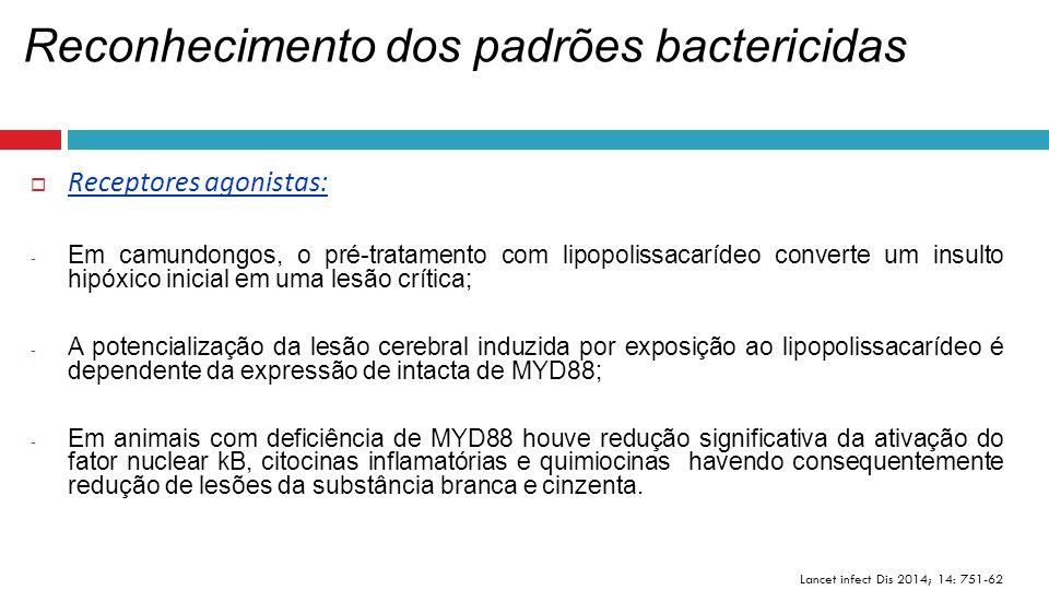 Reconhecimento dos padrões bactericidas