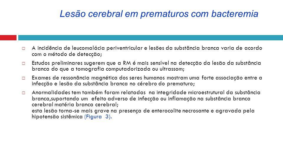 Lesão cerebral em prematuros com bacteremia