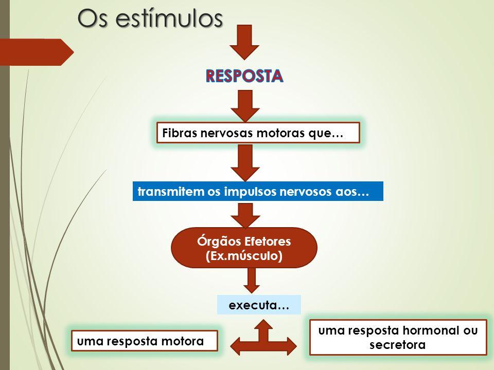 uma resposta hormonal ou secretora