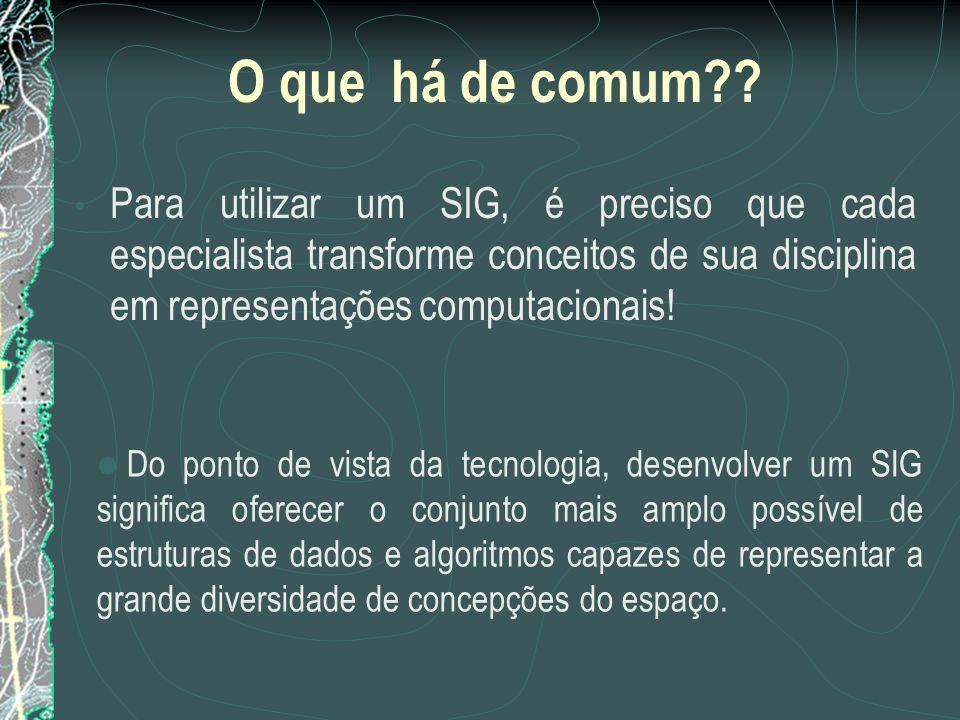 O que há de comum Para utilizar um SIG, é preciso que cada especialista transforme conceitos de sua disciplina em representações computacionais!