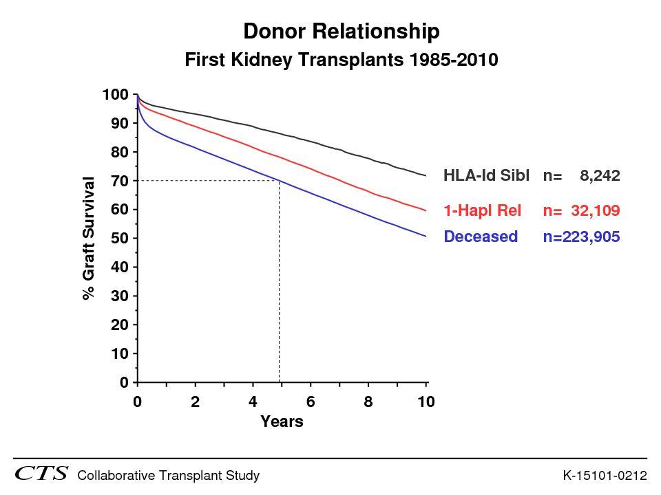 Estes numeros são comparaveis aos dados do CTS, onde a sobrevida do enxerto em 5 anos para transplante com DC foi de 70%