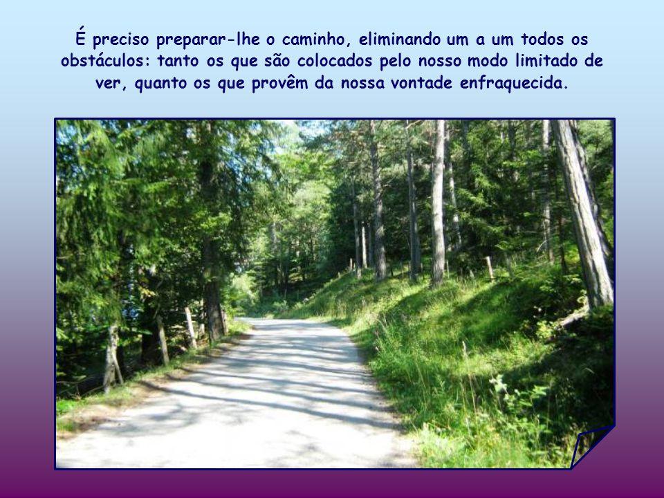 É preciso preparar-lhe o caminho, eliminando um a um todos os obstáculos: tanto os que são colocados pelo nosso modo limitado de ver, quanto os que provêm da nossa vontade enfraquecida.