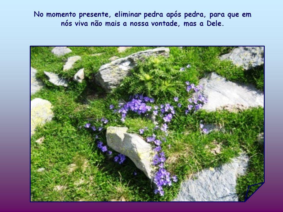 No momento presente, eliminar pedra após pedra, para que em nós viva não mais a nossa vontade, mas a Dele.